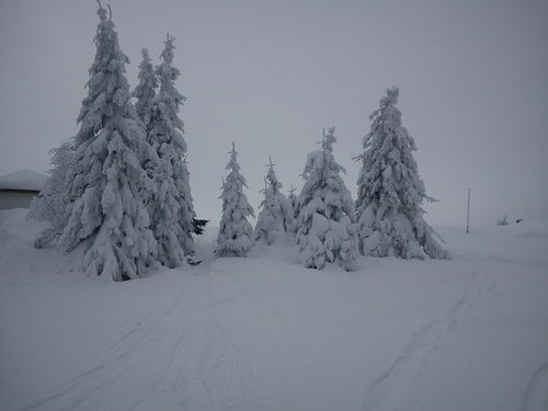 Chepelare Ski Resort by: Nikolay Boychev