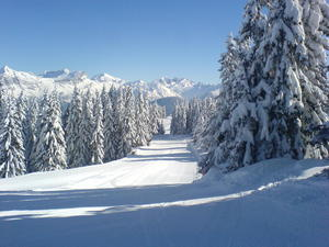 Megeve, France - early morning, empty piste! photo