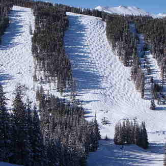 Nice Bumps, Breckenridge