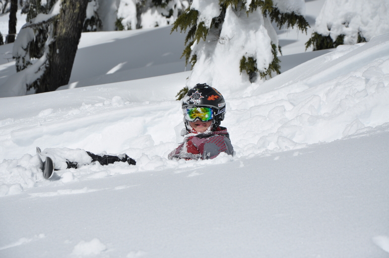 Powder Day at Tline, Timberline