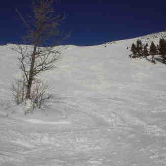 Lake Louise Jan 06