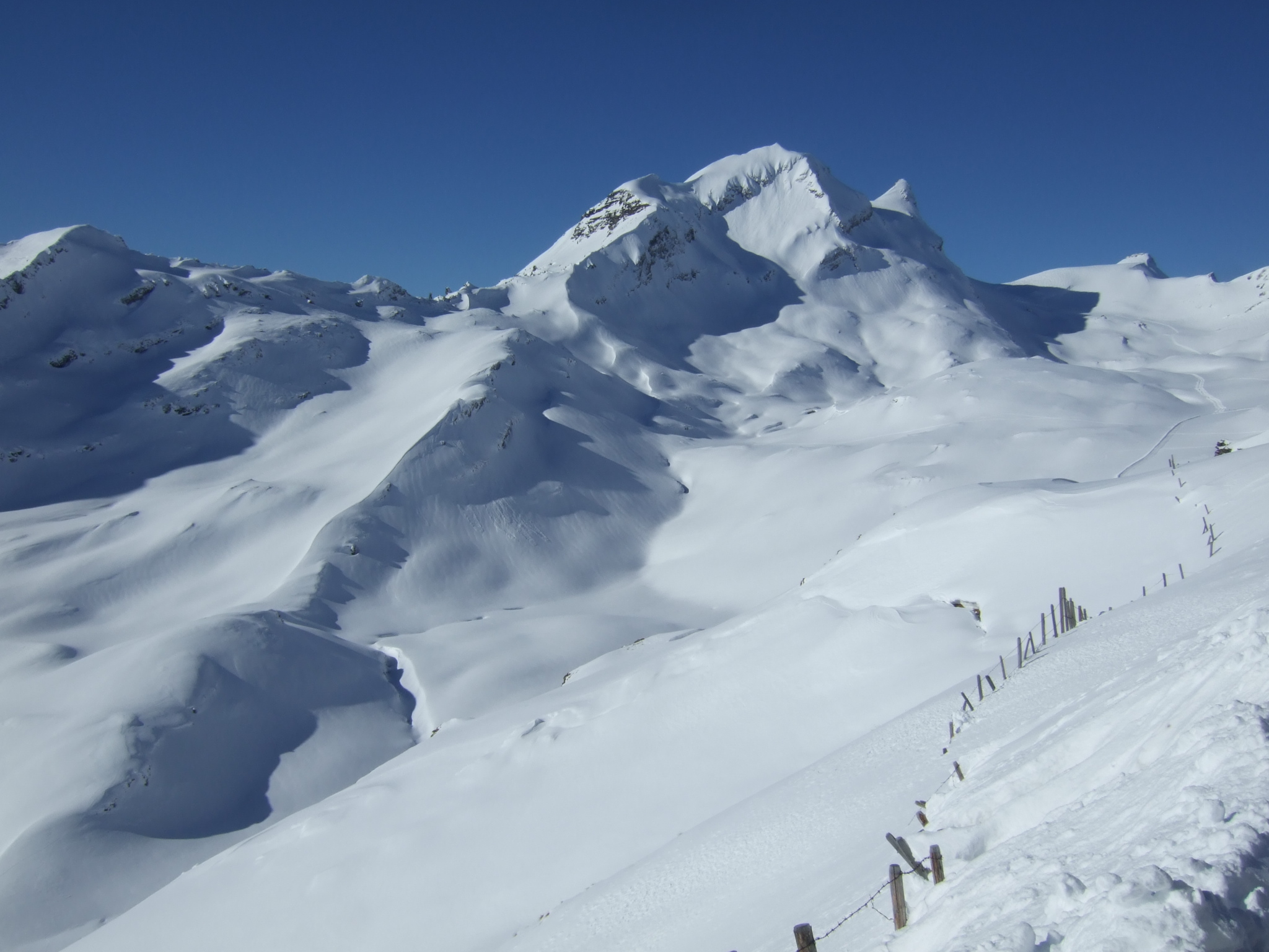 Perfect snow, Grindelwald