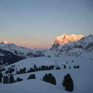 Wengen Snow: End of a perfect day