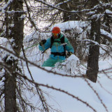 trees, Ski Area Alpe Lusia