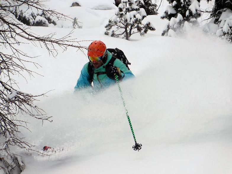 trees 2, Ski Area Alpe Lusia