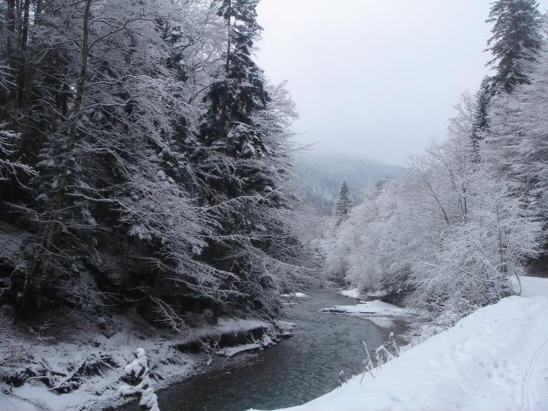 along the river, Azuga