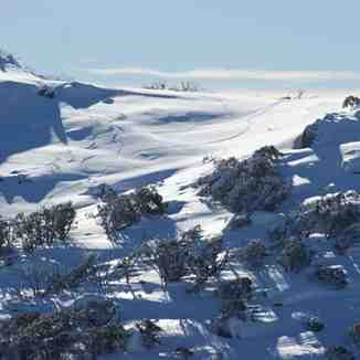 First Tracks at Blue Cow, Perisher