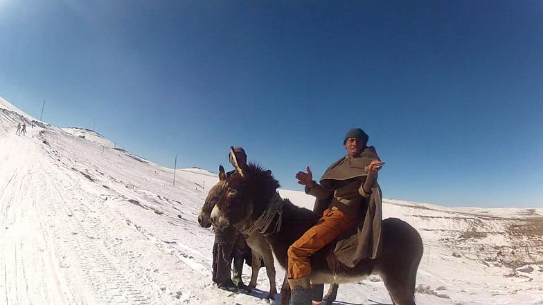 Hey, I picked up someones iPhone, Afriski Mountain Resort