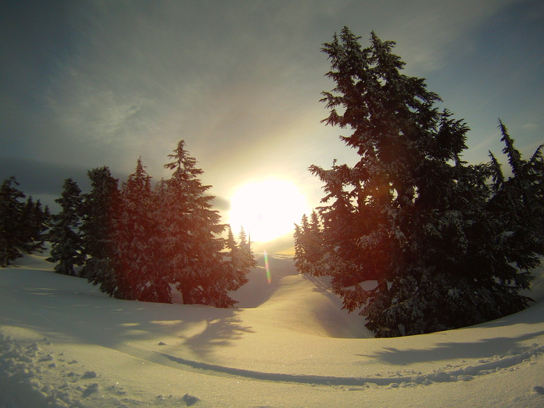 Sunrise hike #2, Timberline