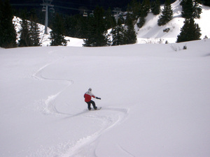 First Tracks Fresh Powder, Leysin photo