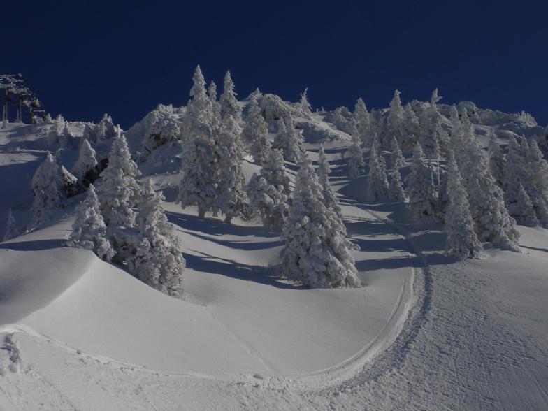 Ehrwalder Alm snow