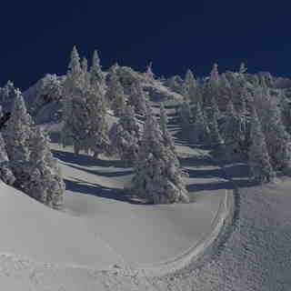 100% Austria, Ehrwalder Alm