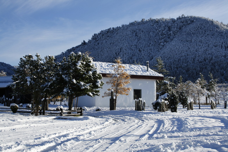Casa Techo Verde, Gerencia Suizandina, Corralco (Lonquimay)