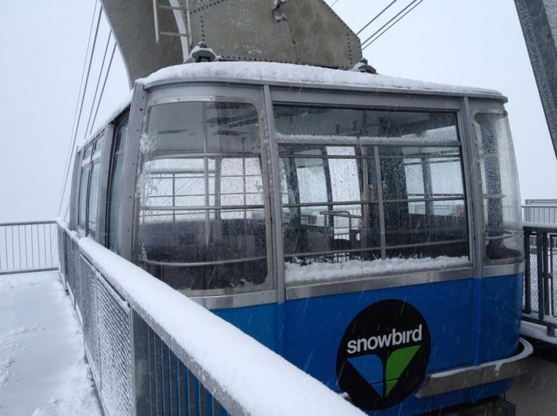 Snowing in Snowbird!
