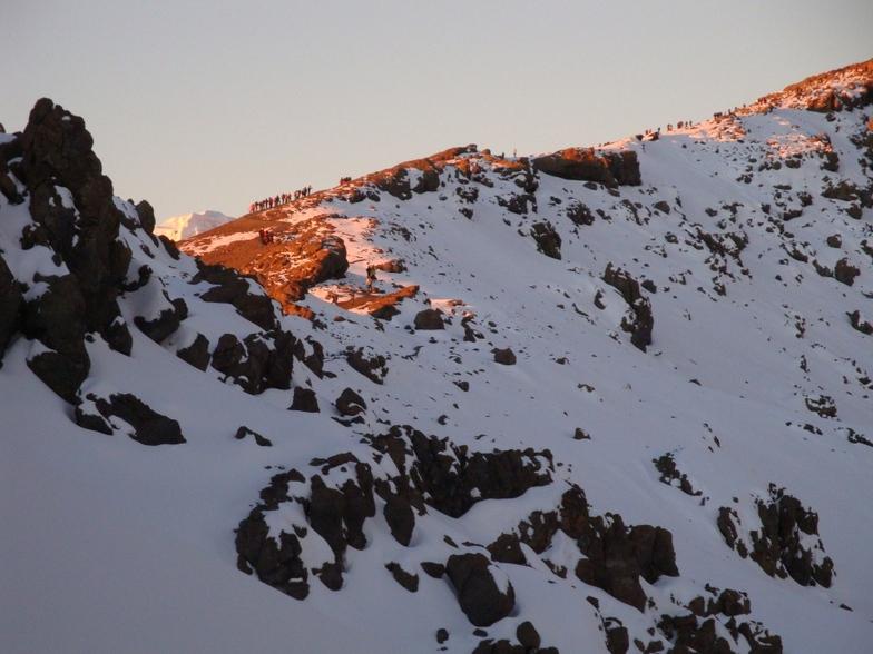 Ali   Saeidi   NeghabeKoohestaN, Mount Kilimanjaro