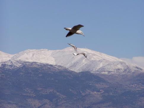 nice view from galil ilion to the hermon, Mount Hermon