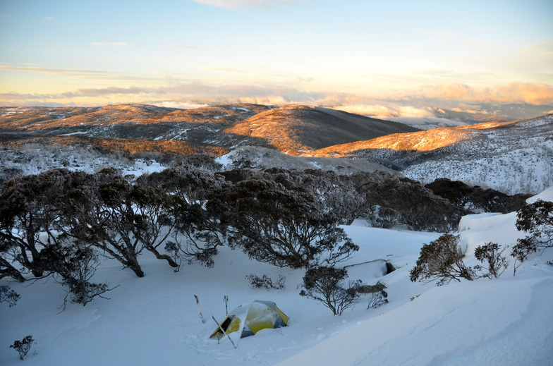 Early morning near Bogong Creek, Thredbo, Australia