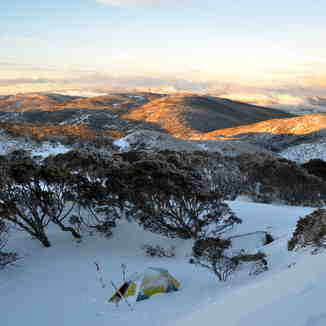 Early morning near Bogong Creek, Thredbo, Australia