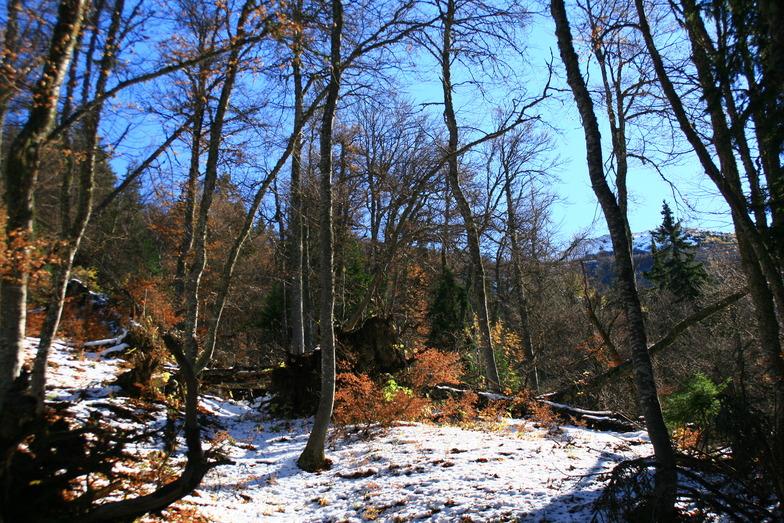 first snow in Villard Reculas, Villard-Reculas