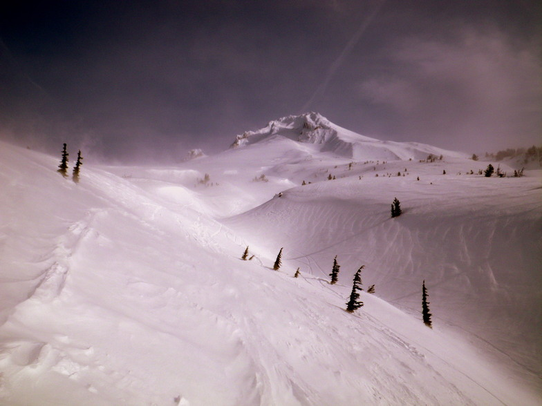 Mount Hood early moring climb2, Timberline