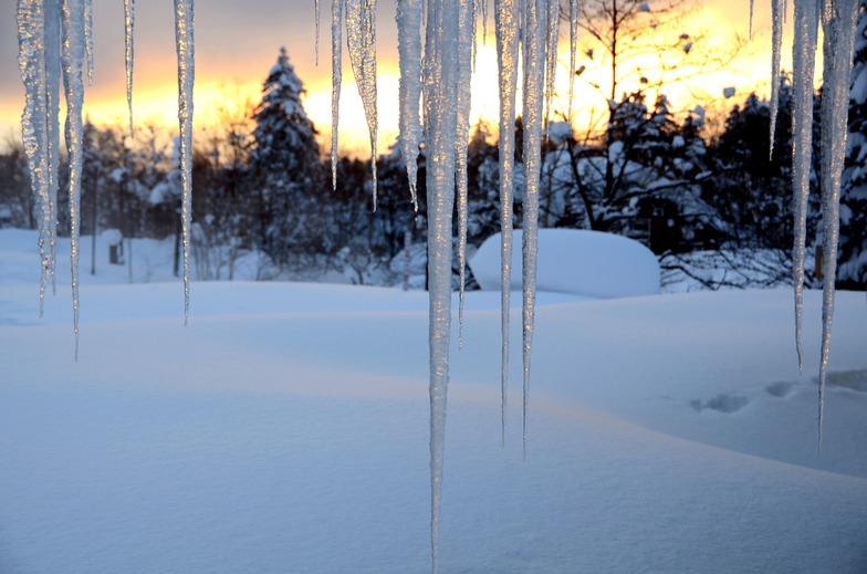 Icicles at Sunset, Asahidake, Hokkaido, Japan