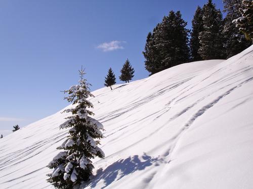 Sun Valley Ski Resort by: Randy Havre
