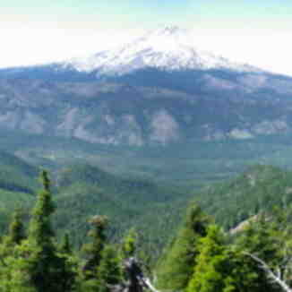 Mount Hood, Timberline