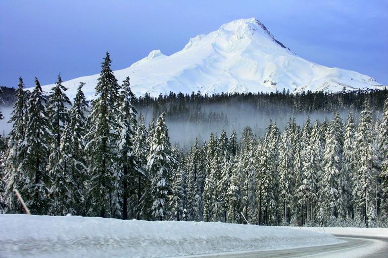 Road to Mount Hood, Timberline