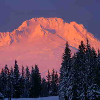 Mt.Hood sunset, Timberline