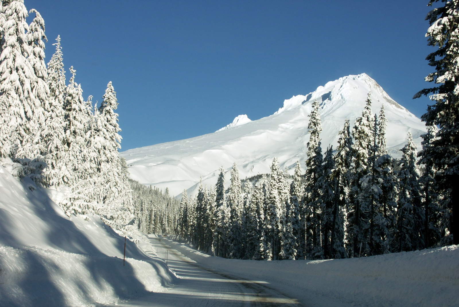 road to Meadows, Mt Hood Meadows