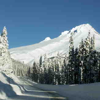 road to Meadows, Mt Hood Meadows