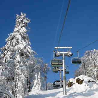 Skier's dream
