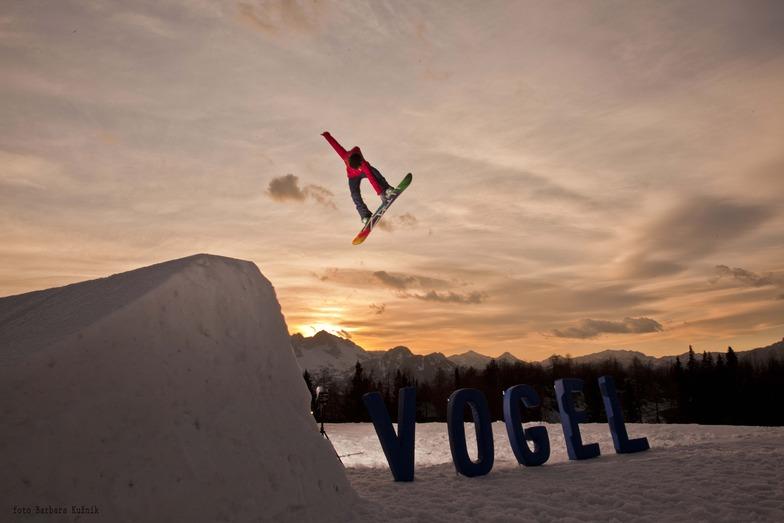 Park Vogel