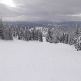 Mid season and all mine..., SilverStar