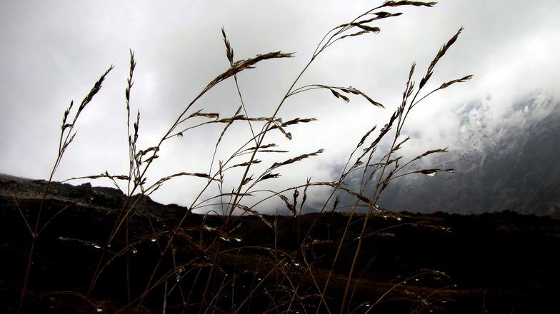 باران, Tochal