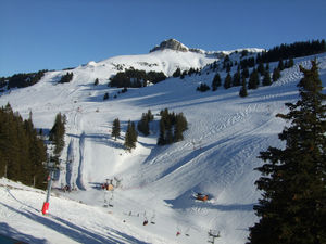 Thollon Pistes, Thollon les Mémises photo