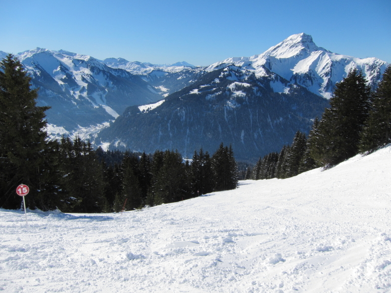 View Down the Barbossine, Chatel