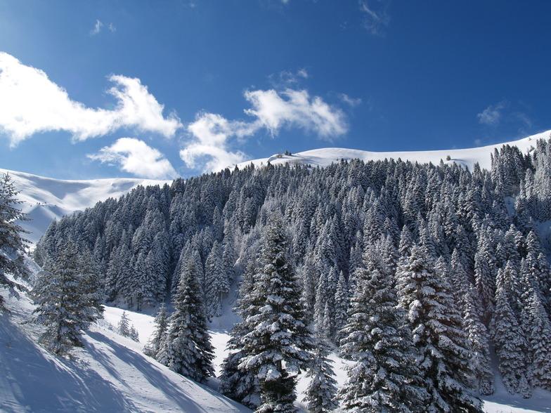 Kozuf Mountain Resort