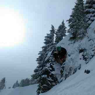Meadows 12/8/12, Mt Hood Meadows