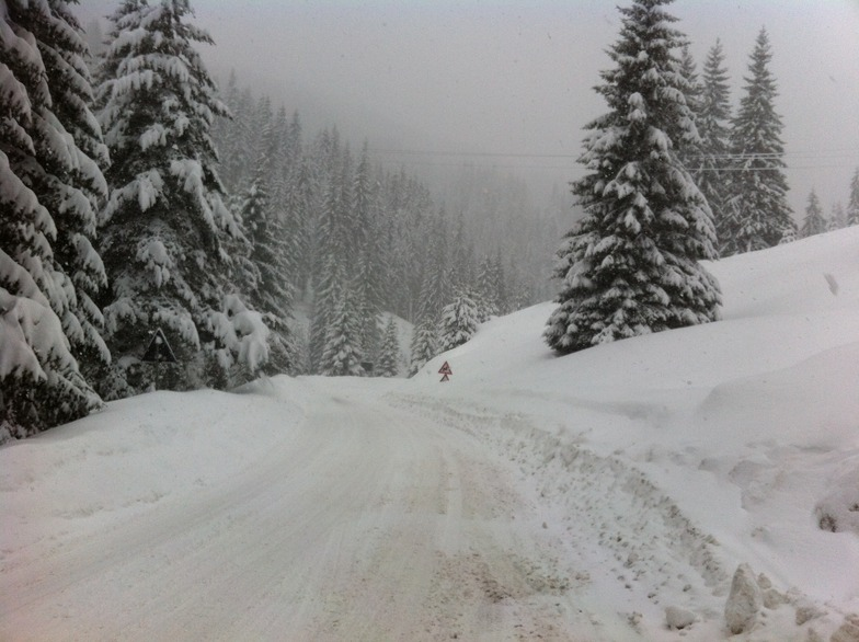 snow road, Pamporovo