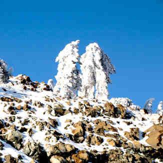 Twins, Mt Olympus