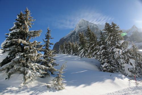 Grindelwald Ski Resort by: Ton