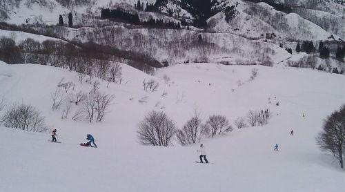 Suhara Ski Resort by: makoto funaoka