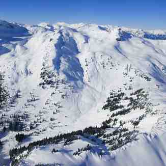 Alpine Catskiing, Powder Mountain Catskiing