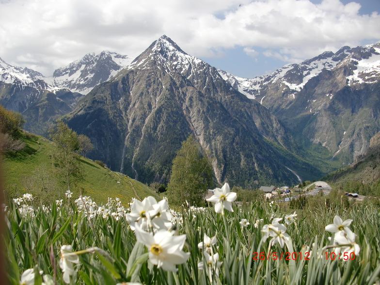 Fleurs de printemps, Les Deux Alpes