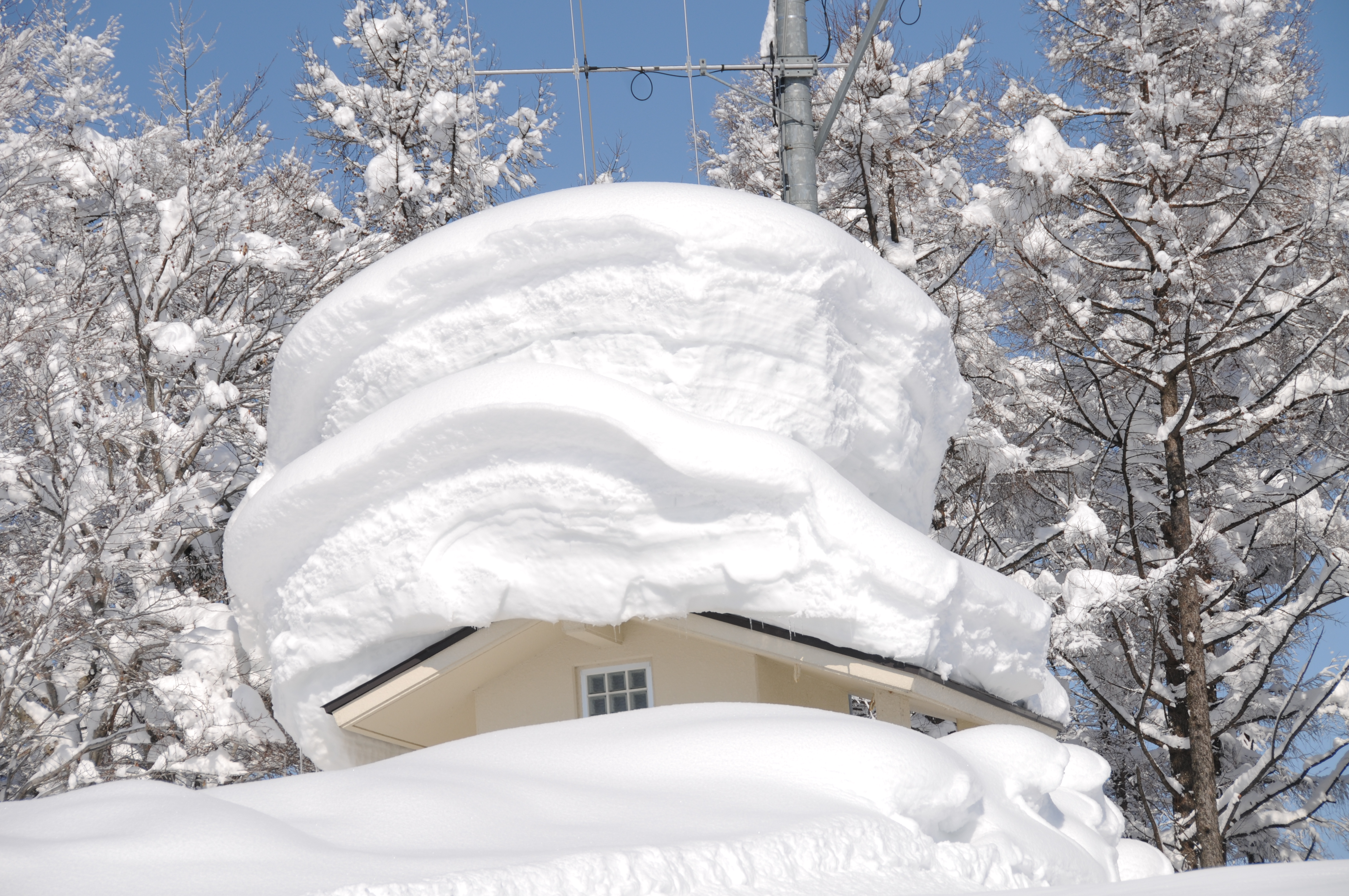 Strong Roof, Nozawa Onsen