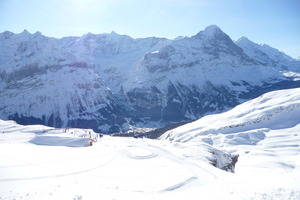 grindelwald in valley photo