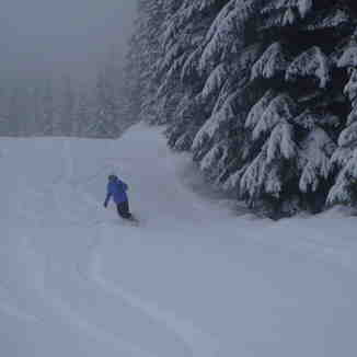 Powder Day!, Whistler Blackcomb
