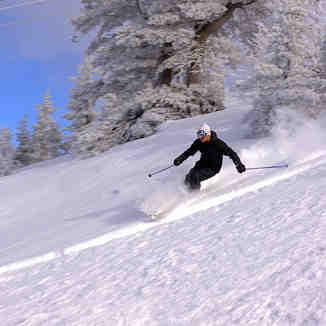 Black Backcountry skier, Brezovica