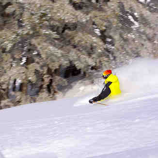Powder Speed Fisi, Brezovica